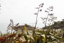 Coast of brittany wordpress-2